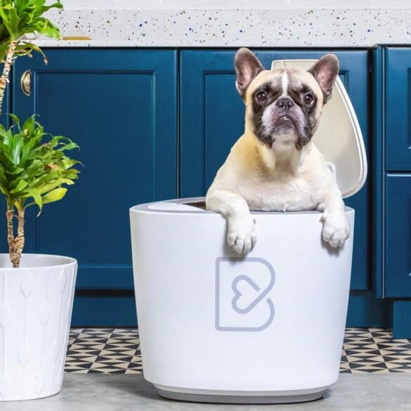 barkyn home dispositivo sanitario cani smart
