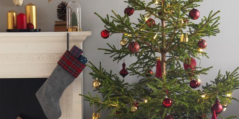 IKEA ti regala l'albero di Natale con l'iniziativa di Legambiente
